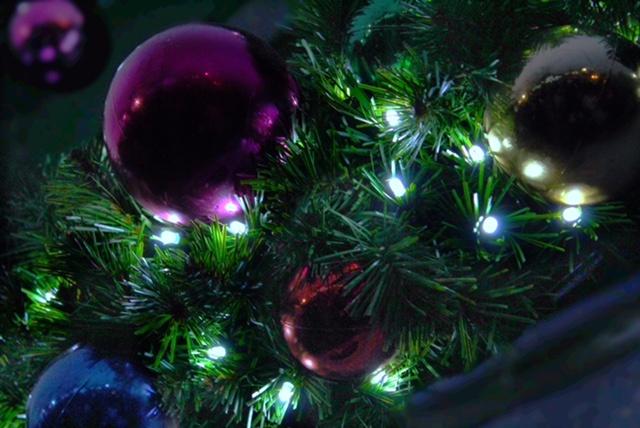 eli_lights1